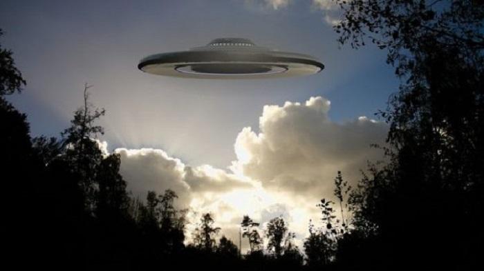 Collage-Ufo-Invasion-Forest-1784349-e1543939290419